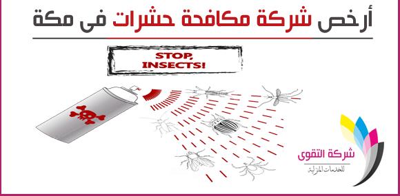 ارخص شركة مكافحة حشرات في مكة